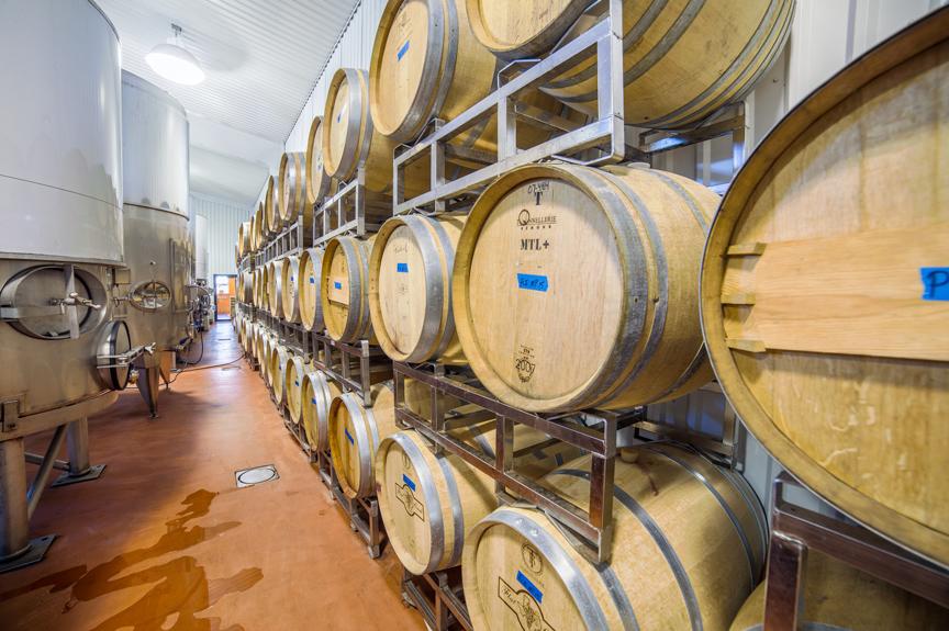 Wine-Barrels-1